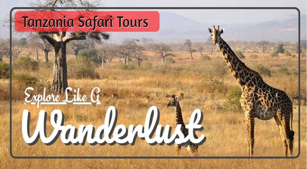 Tours Like A All Explore Weather Tanzania Wanderlust Safari PTOXZuki