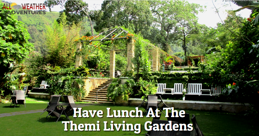 Lunch At The Themi Living Gardens